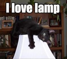 I Love You Lamp