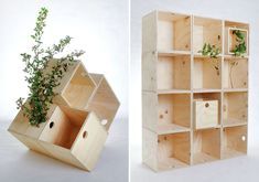 Boxes that can be put together in whatever design needed.  I particular like the diamond shaped arrangement.