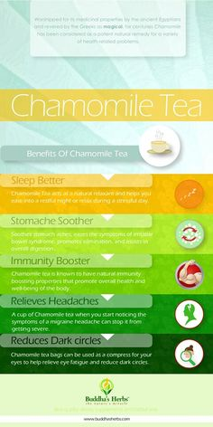 Benefits of Chamomile Tea - Infographic Chamomile Tea Benefits, Calendula Benefits, Herbal Remedies, Natural Remedies, Holistic Remedies, Holistic Healing, Peppermint Tea Benefits, Sencha Tea, Coconut Benefits