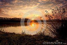 Sunrise on the pond with birds on sky
