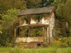 Cool abandoned house being swallowed by nature...we have a bunch of these around Ste. Gen! Old Abandoned Buildings, Abandoned Property, Abandoned Mansions, Old Buildings, Abandoned Places, Left Alone, Old Farm Houses, Vintage Houses, Old Barns