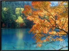 Lake Onneto Framed Photographic Print at Art.com