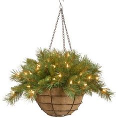 Three Posts™ Glittery Bristle Hanging Basket | Wayfair Artificial Hanging Baskets, Artificial Plants, Fake Plants, Christmas Hanging Baskets, Led Battery Lights, Peonies And Hydrangeas, White Led Lights, Faux Flowers, Plant Decor