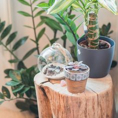 Zuhause Meditieren Lernen: Dein Meditationsraum | Meditation Corner |  Pinterest | Meditieren, Lernen Und Deins