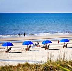 Hilton Head Island Sc Vacation Club Spots Destinations Beach Vacations