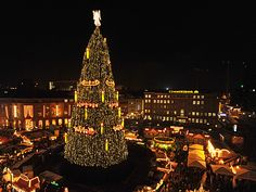 2010 in Dortmund ...unter dem größten Weihnachtsbaum der Welt