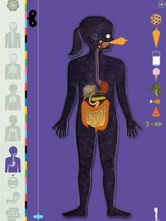 the-human-body-2