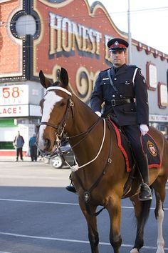 Toronto mounted police at Bloor and Bathurst, by Honest Ed's (Ed Mirvish landmark store), Toronto, Ontario