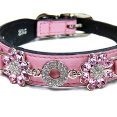 Adorable girly collar!    Hartman and rose fresh as a daisy collection.   from petsmart