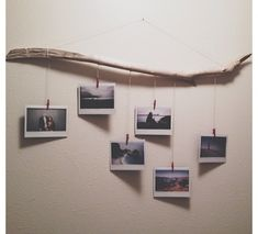 hang pictures from found branch