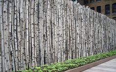 Birch fence. Thomas balsley associates. 7 idées de clôtures originales à réaliser soi-même