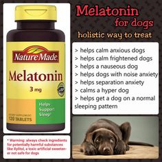 Melatonin helps reduce restlessness and aids sleep, and its effects usually last… – Englishdiet Dog Care Tips, Pet Care, Melatonin For Dogs, Meds For Dogs, Hyper Dog, Dog Anxiety, Homemade Dog Food, Sleeping Dogs, Pet Health
