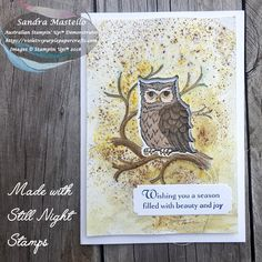 Still Night for Christmas Bird, Stampin Up Christmas, Christmas Cards To Make, Holiday Cards, Scrapbook Cards, Scrapbooking, Owl Card, Paint Cards, Bird Cards