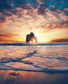 No hay sueño pequeño ------------- Grandes son las personas que te incitan a ello ------------- Fot.: SDijkstra #paisaje #seascape #atardecer #sunset #agua #water #playa #beach #oceano #ocean