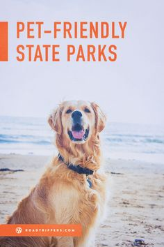 Pet Friendly State Parks! No one gets left behind if you go to one of these state parks.