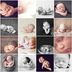 collage of newborn poses