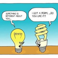 A little hair humor…Happy Sunday! A little hair humor…Happy Sunday! Cartoon Jokes, Funny Cartoons, Funny Comics, Electrician Humor, Getting A Perm, Science Humor, Physics Humor, Engineering Humor, Electrical Engineering