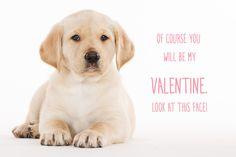 Daily Dose - February 14, 2015 - Happy Valentines Day!   2016©Barbara O'Brien Photography
