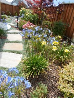 June 2014 Landscaping Ideas, Garden Landscaping, Natural Line, Annual Flowers, Bulb Flowers, Flowers Perennials, Container Gardening, Stepping Stones, June