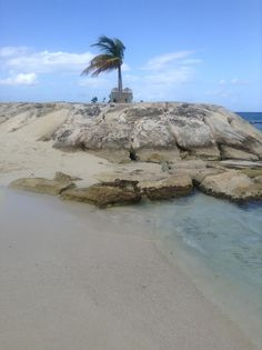 Secrets Wild Orchid Montego Bay Jamaica Dec 2013
