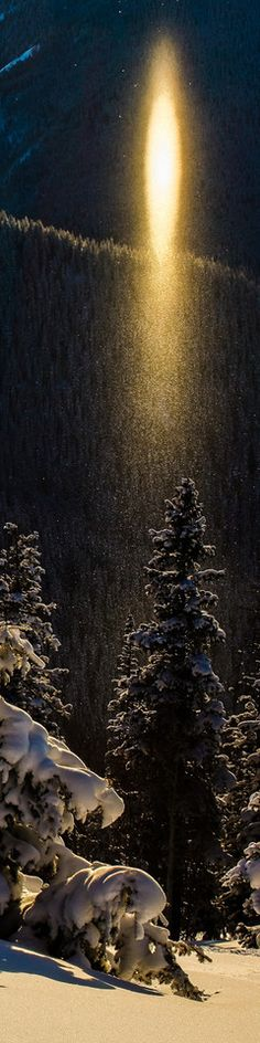 Sun pillar on the back side of Aspen Mountain • photo: Thomas O'Brien  via diggerdawwwg