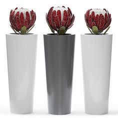 Obbligato contemporary furniture and accessories - planters, seating bespoke furniture for commercial, retail and hospitality projects Felt Flowers, Beaded Flowers, Protea Flower, Flower Bouquets, Contemporary Planters, Contemporary Furniture, African Crafts, Plant Art, Bespoke Furniture