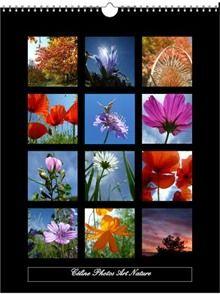 Calendriers du site Céline Photos Art Nature