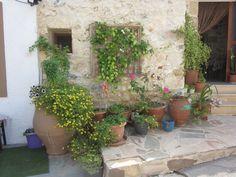 Koutouloufari Plants, Crete, Plant, Planets