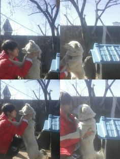 V playing with his dog(anyone know its name?)