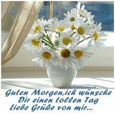 Guten-Morgen                                                                                                                                                                                 Mehr