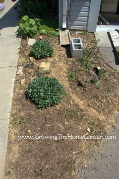 Growing The Home Garden: Making A Dry Creek Bed Drainage Canal for Downspouts