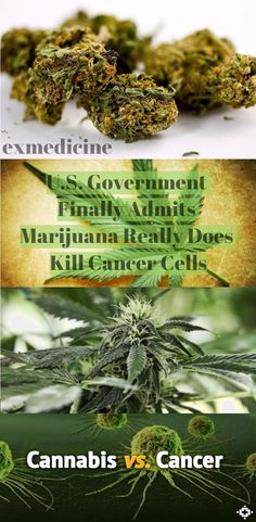 I've always said Mary Jane is medicine God put on the Earth for everyone that is in need.