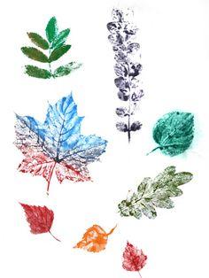 Цветные отпечатки листьев