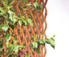 Plant training garden screen