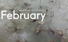 Have some fun in Stockholm this month! The post What's On in Stockholm: February 2021 first appeared on Scandinavia Standard.