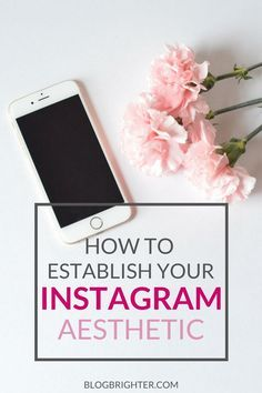 Simple and elegant blog graphic. How to Establish Your Instagram Aesthetic - Tips for how to have a cohesive look to your Instagram