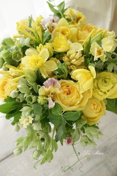 For many gardeners and recipients of a bouquets, yellow flowers are a sign of spring and will create joy in all of us. The color yellow creates joy and happiness and spreads delight and a smile for… Beautiful Flower Arrangements, Fresh Flowers, Spring Flowers, Floral Arrangements, Beautiful Flowers, Exotic Flowers, Bouquet Champetre, Yellow Bouquets, Diy Wedding Flowers