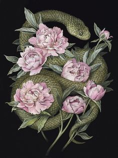 Garter Snake In Peonies In Pink Snake Painting - Red Ink Tattoo Design Pink Snake And Peonies Illustration Red Ink Tattoo Design Pink Snake And Peonies Illustration Snake Watercolour Wallpapers For You Shut Up This Is Amazing Gorgeous Amp Red Ink Tattoos, Body Art Tattoos, Watercolor Wallpaper, Watercolor Flowers, Watercolour, Snake Painting, Medusa Painting, Floral Illustration, Snake Art