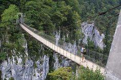 Selva de Irati puente  Navarra. Spain