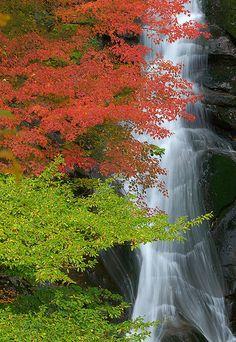 Sohren Falls, Japan