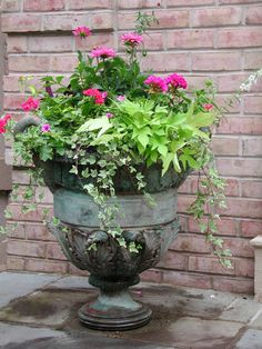 Love the colors and the planting in this gorgeous old pot.  What character it has.