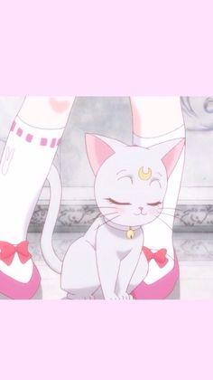 粉色 pink 美少女战士 少女心 壁纸 大图