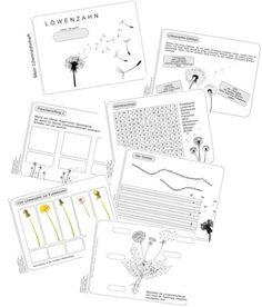 magnetismus grundschule arbeitsblatt 1 schuljahr pinterest kindergarten school und. Black Bedroom Furniture Sets. Home Design Ideas
