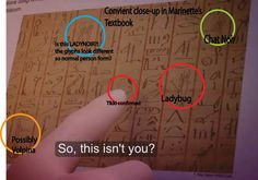 Egyptian reference, from the pharaoh episode (Miraculous Ladybug)