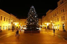 Szeged karácsonyfája - Szeged Christmas tree