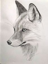 Fox, micron sketch by Margaret Dean – Art Sketches Realistic Animal Drawings, Pencil Drawings Of Animals, Cool Art Drawings, Animal Sketches, Art Drawings Sketches, Drawing Ideas, Realistic Sketch, Fox Sketch, Fox Drawing