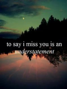 Understatement indeed... I miss my son... 11/7/85 - 6/23/14