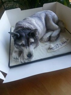 Husky cake (all cakekl) made by The Cake Illusionist (Hertfordshire, United Kingdom). This picture is their most viral cake picture of 2015 with over 1 million views. Fancy Cakes, Cute Cakes, Cupcake Original, Wolf Cake, Realistic Cakes, Puppy Cake, Animal Cakes, Sculpted Cakes, Gateaux Cake