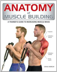 Anatomy of Muscle Building A Trainer's Guide to Increasing Muscle Mass http://www.mysharedpage.com/anatomy-of-muscle-building-a-trainers-guide-to-increasing-muscle-mass