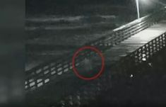 As Hurricane Florence bears down on the Carolinas, some believe the mysterious Gray Man is making the rounds to warn coastal residents. Paranormal, Creepy, Scary, Real Ghost Pictures, Spirit Ghost, Real Ghosts, Haunted Places, Mysterious, Shadows